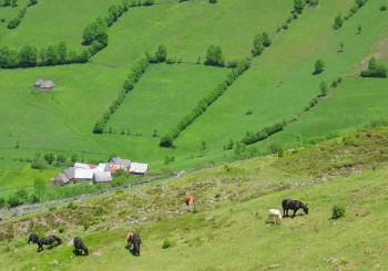 les granges Bertrand, hameau de l'Aspe Sentein